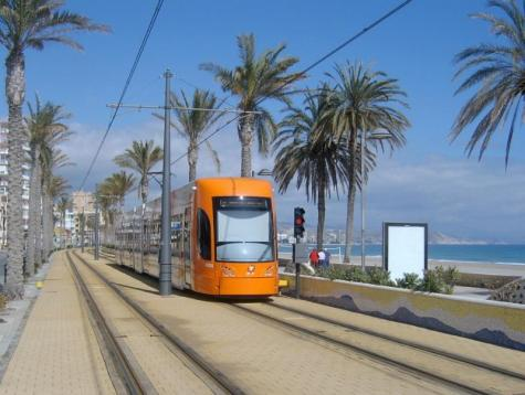 Alicante Local Travel Info