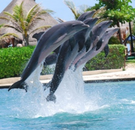 Cancun Family Holiday
