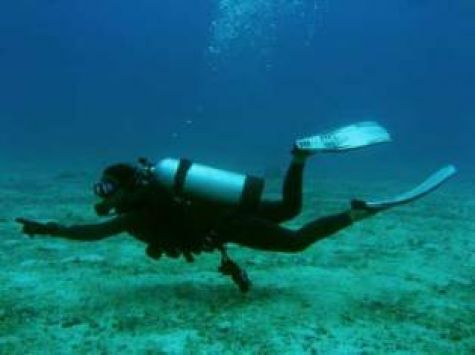 Scuba Diving Activity Holiday